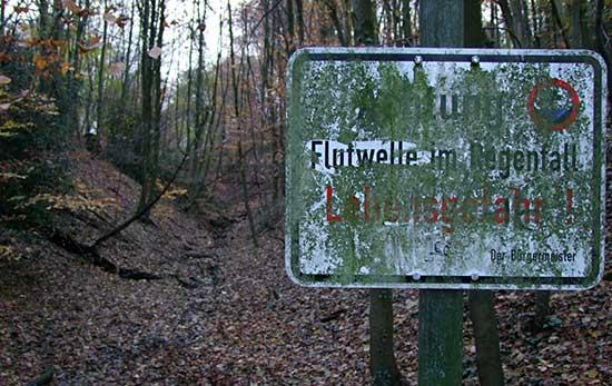 flutwelle_im_regenfall_dscf0089.jpg